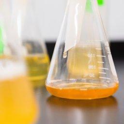 Forschung, Chemie, Reagenzglas, unsplash.com, Elevate