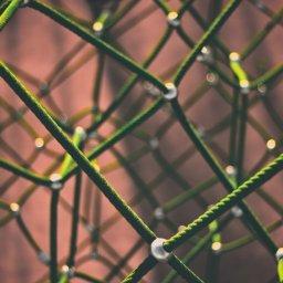 Netzwerk, Netz, Spielplatz, unsplash.com, Clint Adair