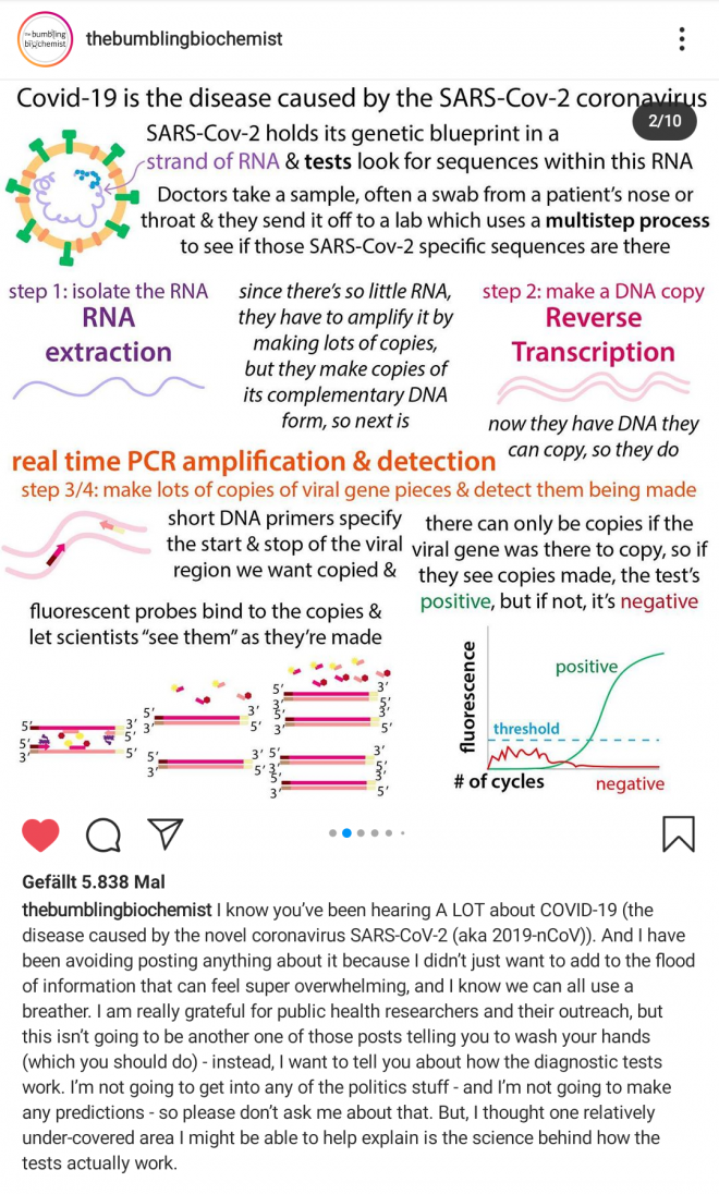 Instagram, @BumblingBiochemist