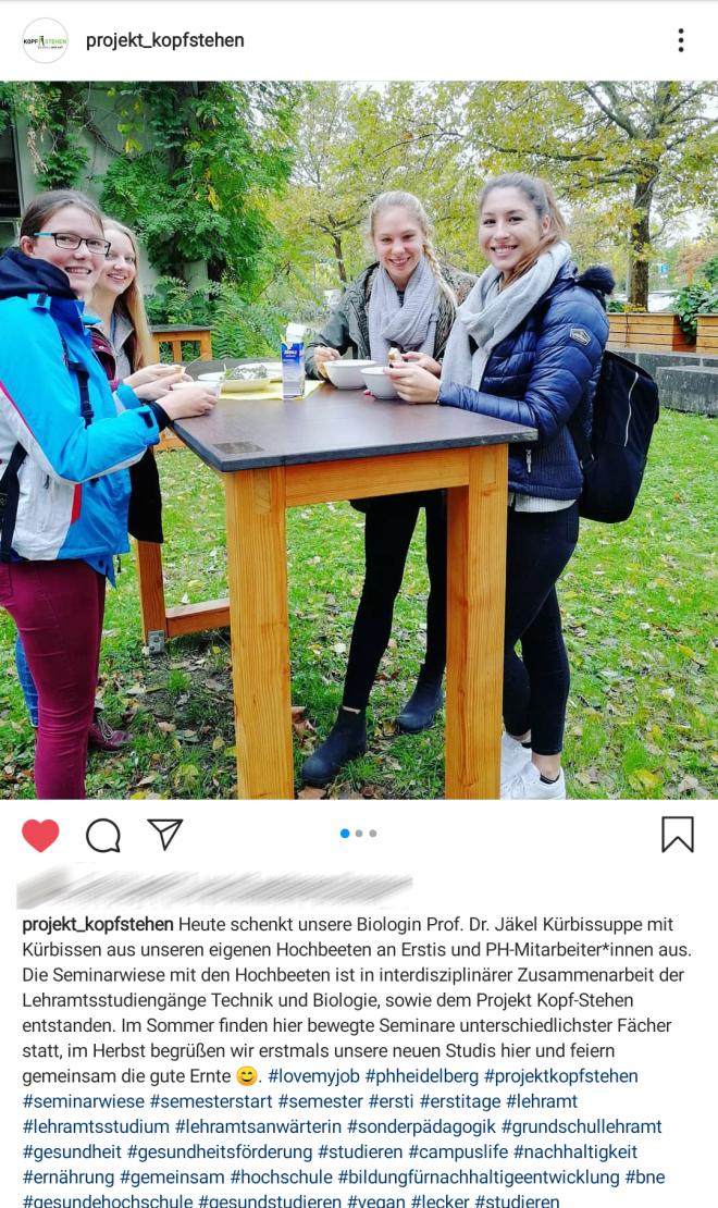 Instagram, @projekt_kopfstehen