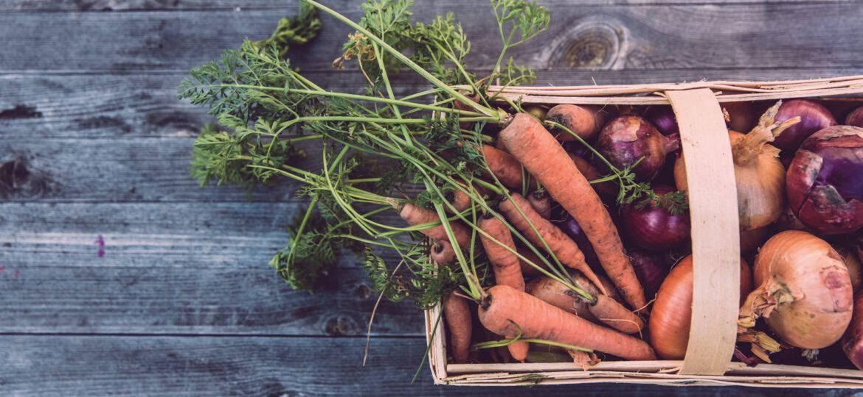 Gemüse, BNE, Nachhaltigkeit, unsplash.com, Markus Spiske